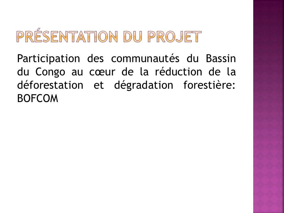 Participation des communautés du Bassin du Congo au cœur de la réduction de la déforestation et dégradation forestière: BOFCOM