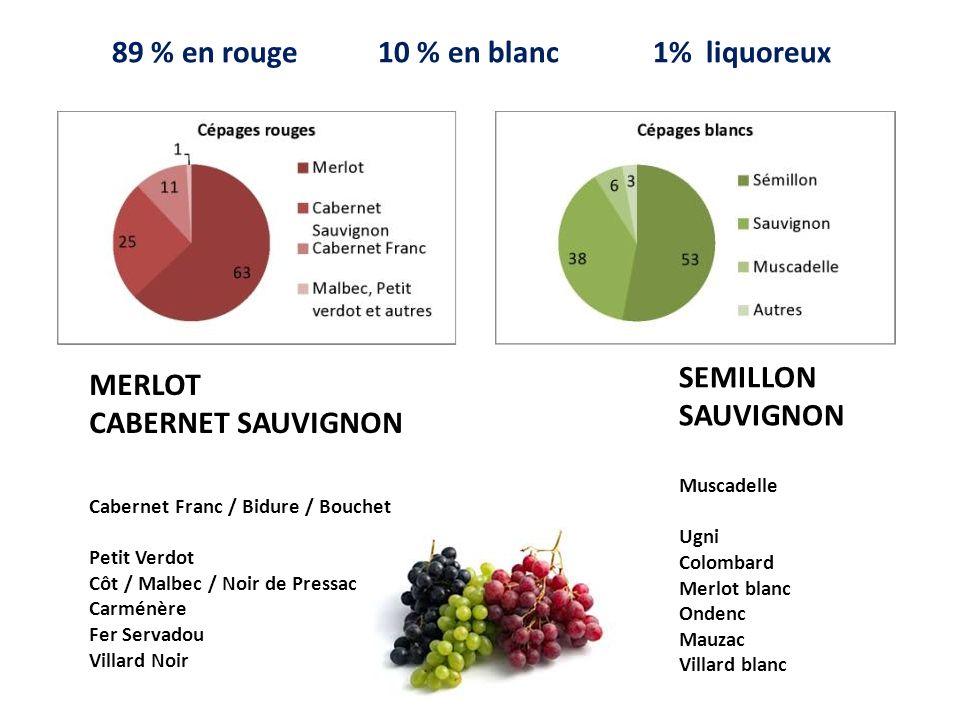 MERLOT CABERNET SAUVIGNON Cabernet Franc / Bidure / Bouchet Petit Verdot Côt / Malbec / Noir de Pressac Carménère Fer Servadou Villard Noir SEMILLON S