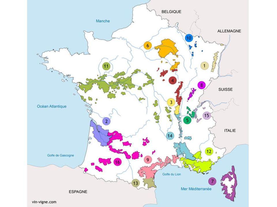 Haut-Médoc Château Sociando-Mallet 2006 55 % Cabernet Sauvignon 40 % Merlot 5 % Cabernet Franc 12.5 % vol.