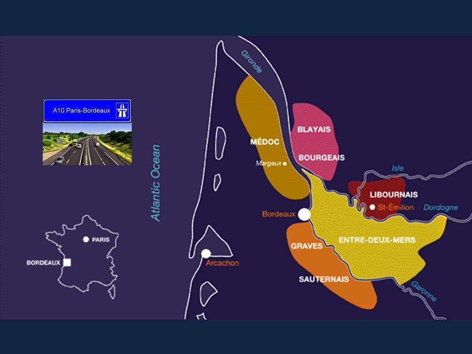 Libournais Pomerol Clos René 2011 70 % Merlot 20 % Cabernet Franc 10 % Malbec 13.5 % vol. 88-91