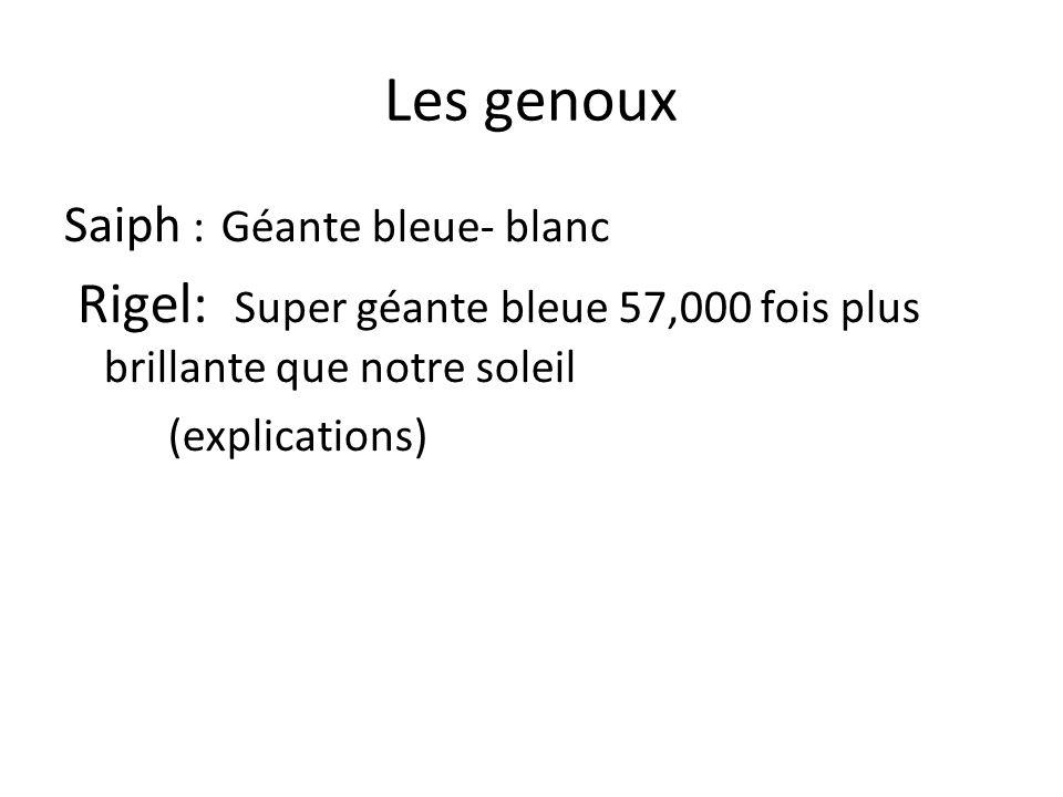 Les genoux Saiph :Géante bleue- blanc Rigel: Super géante bleue 57,000 fois plus brillante que notre soleil (explications)