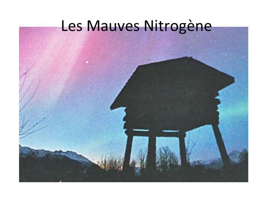 Les Mauves Nitrogène