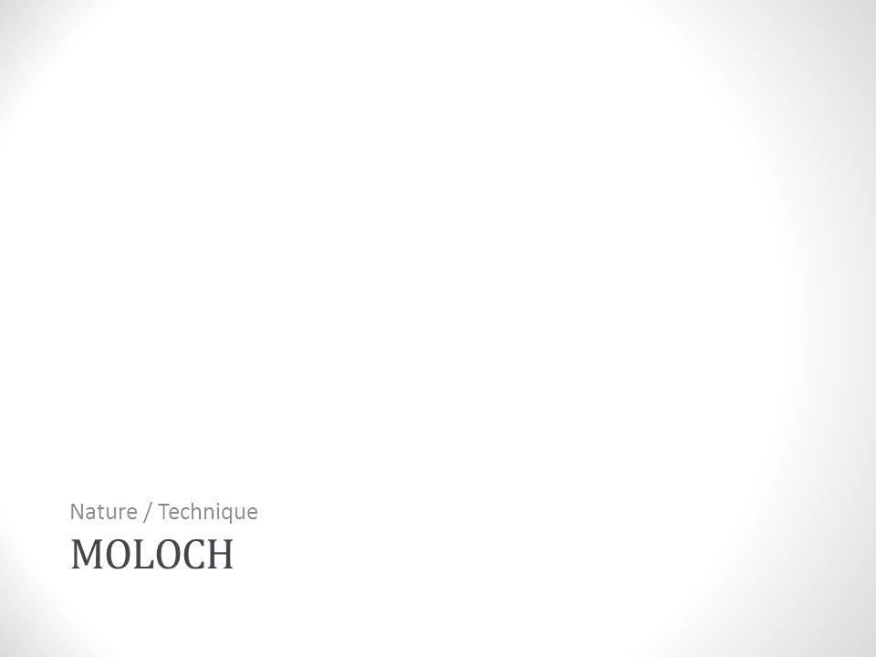 MOLOCH Nature / Technique