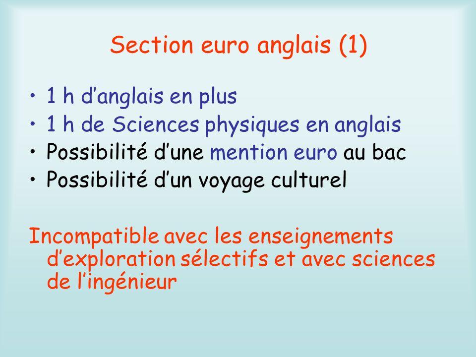 Section euro anglais (2) 1 h danglais en plus 1 h déconomie gestion en anglais Possibilité dune mention euro au bac Possibilité dun voyage culturel Incompatible avec les enseignements dexploration sélectifs et avec sciences de lingénieur