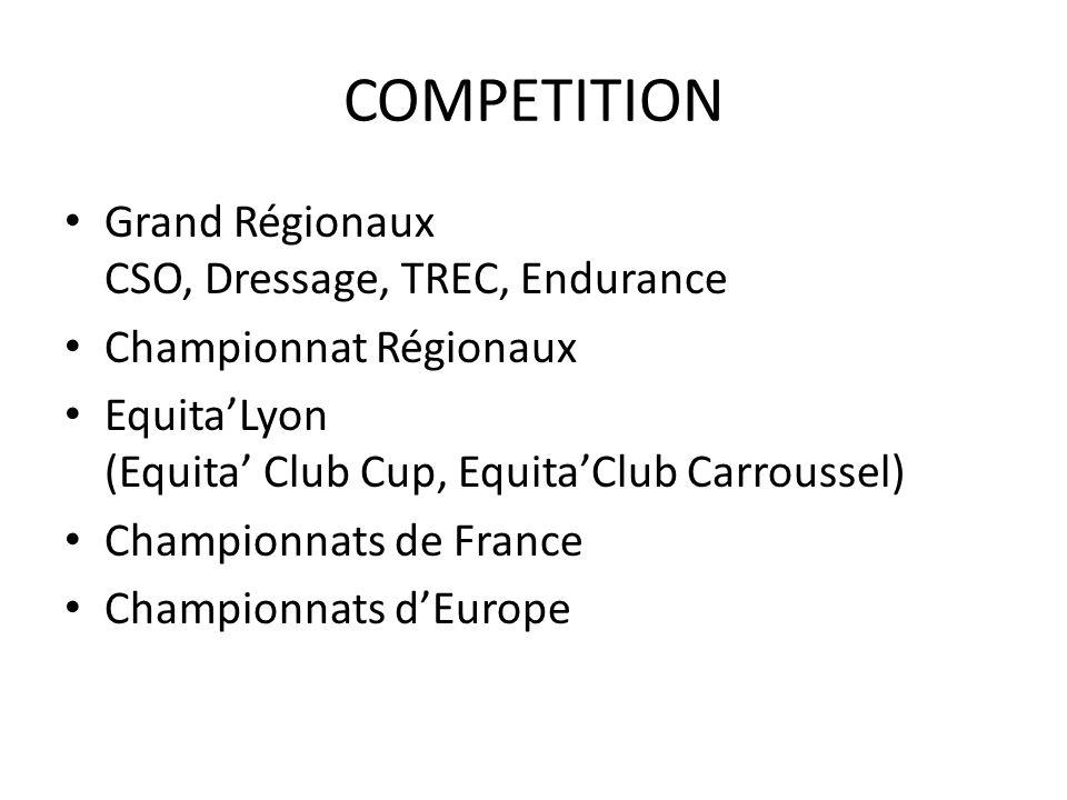Poneys CSO Championnat dEurope (équipe 4°) Mégane Moissonnier, Jean Xhémal DRESSAGE Championnat dEurope (équipe 5°) Clarissa Stickland, Capucine Molliex