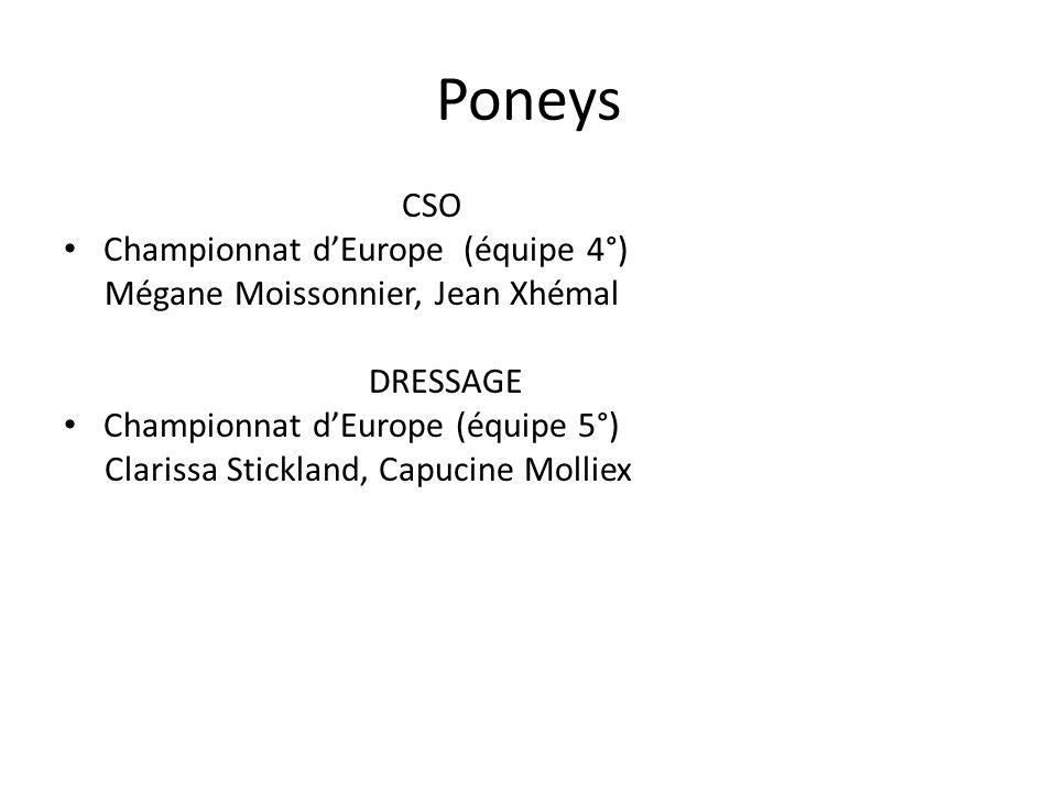 Chevaux CCE Thibault Champel pré-sélection Championnat dEurope Endurance Caroline Denayer équipe de France Championnat dEurope (réserviste) Reining Yves Fromont, Cédric Guerreiro équipe de France (5°) Championnat dEurope