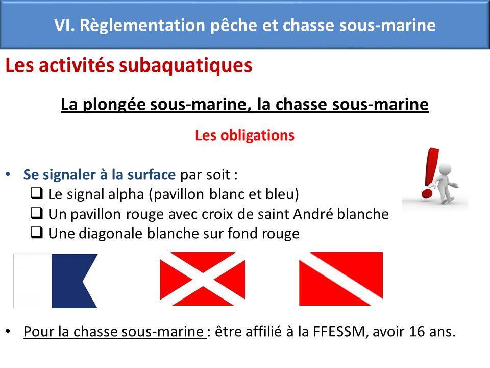 VI. Règlementation pêche et chasse sous-marine Les activités subaquatiques La plongée sous-marine, la chasse sous-marine Les obligations Se signaler à