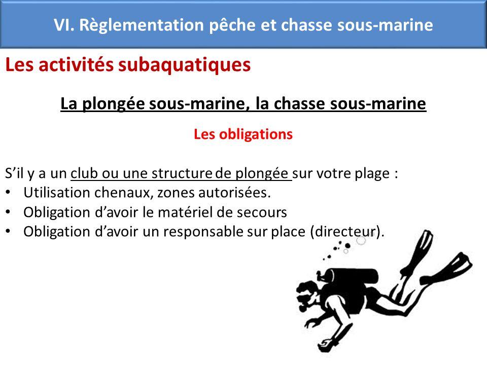 VI. Règlementation pêche et chasse sous-marine Les activités subaquatiques La plongée sous-marine, la chasse sous-marine Les obligations Sil y a un cl