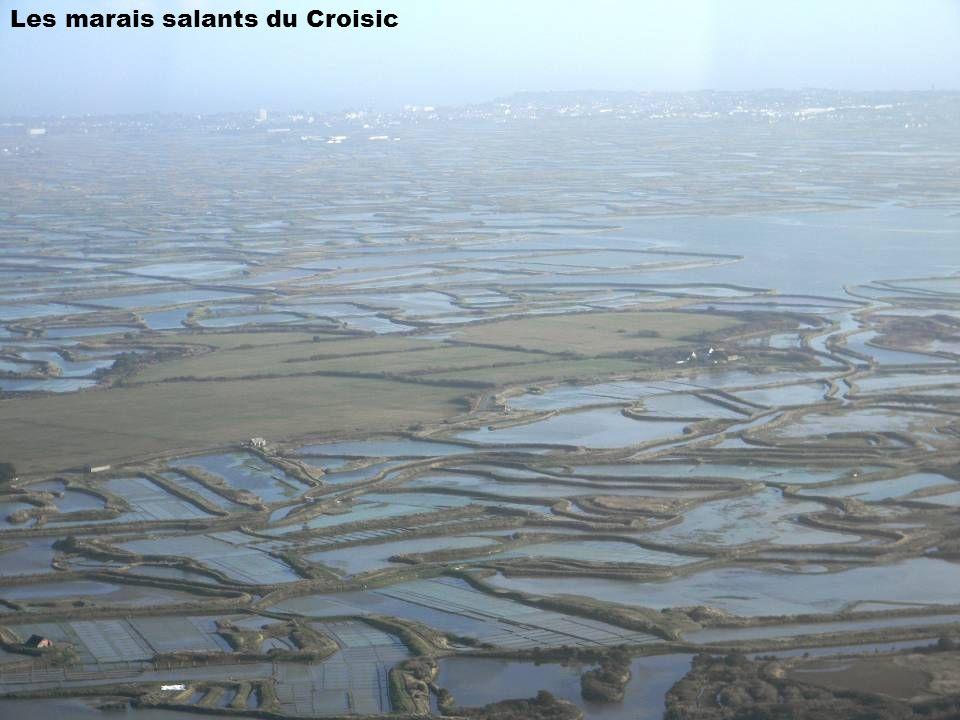 Les marais salants du Croisic