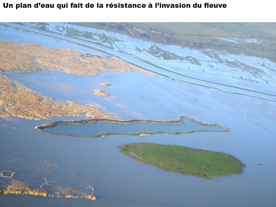 Un plan deau qui fait de la résistance à linvasion du fleuve