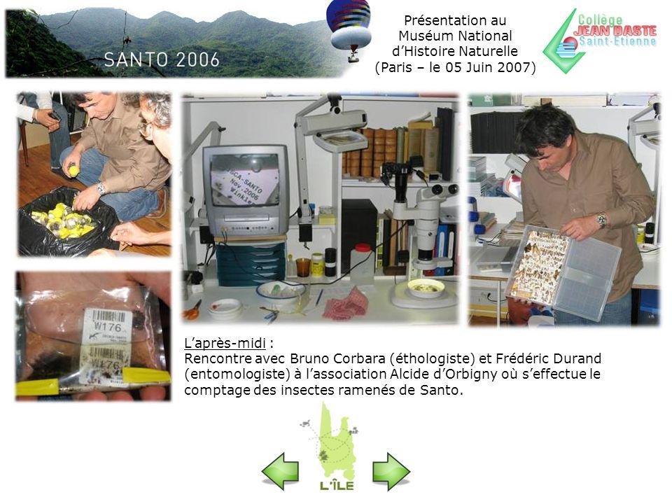 Laprès-midi : Rencontre avec Bruno Corbara (éthologiste) et Frédéric Durand (entomologiste) à lassociation Alcide dOrbigny où seffectue le comptage de