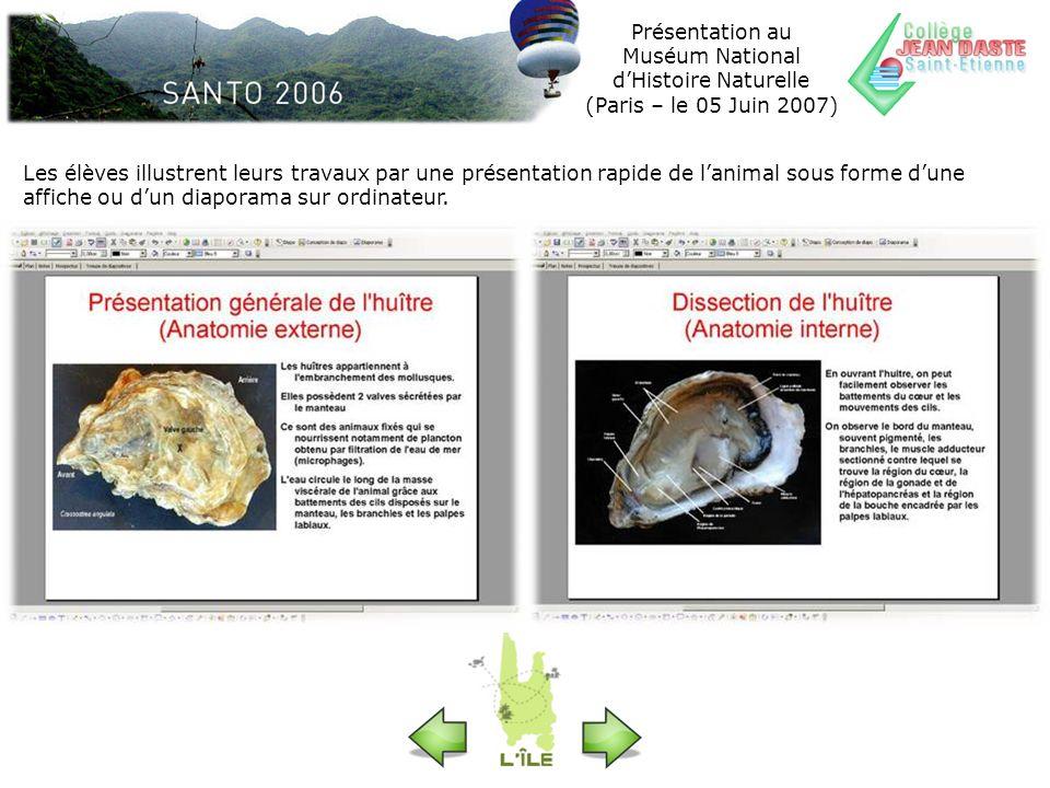 Présentation au Muséum National dHistoire Naturelle (Paris – le 05 Juin 2007) Les élèves illustrent leurs travaux par une présentation rapide de lanim