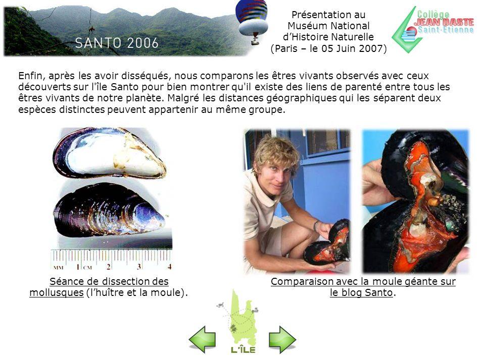 Présentation au Muséum National dHistoire Naturelle (Paris – le 05 Juin 2007) Séance de dissection des mollusques (lhuître et la moule). Comparaison a