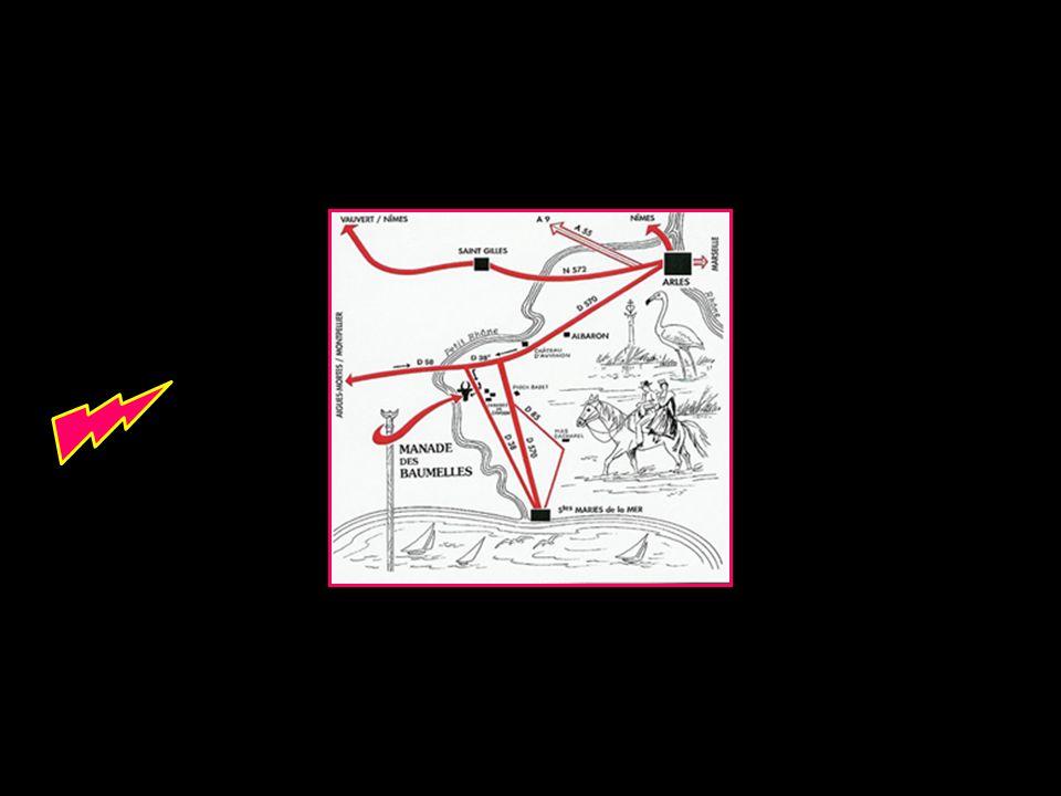 La Manade des Baumelles est située à 9 km du village des Saintes-Maries de la Mer au lieu dit Cabanes de Cambon sur la D38 aux abords du petit Rhône