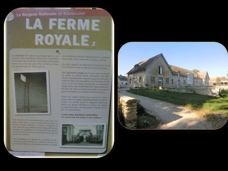La bergerie nationale créée par Louis XVI en 1784 est depuis 1926 une école de bergers, puis en 1939, elle devient le siège de lécole nationale délevage ovin.