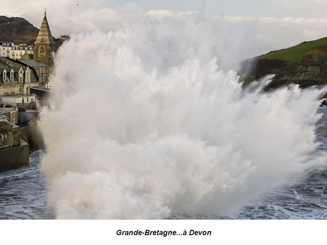 Grande-Bretagne... à Dorset