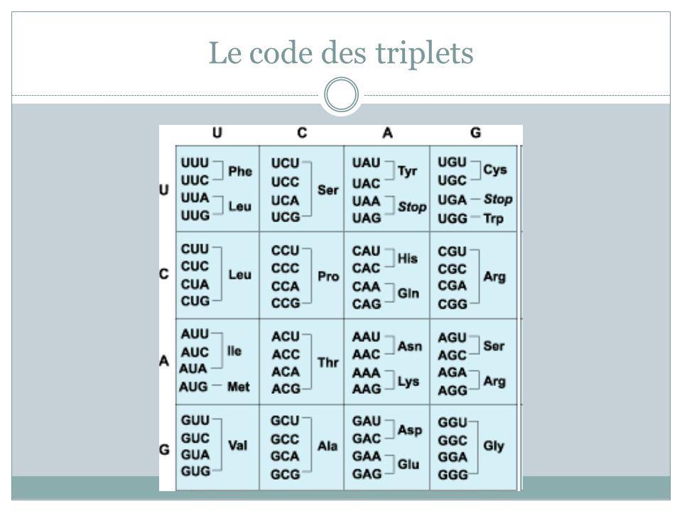 Le code des triplets