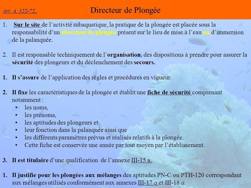 Directeur de Plongée 1.