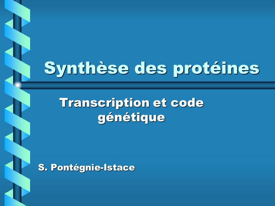Synthèse des protéines Transcription et code génétique S. Pontégnie-Istace