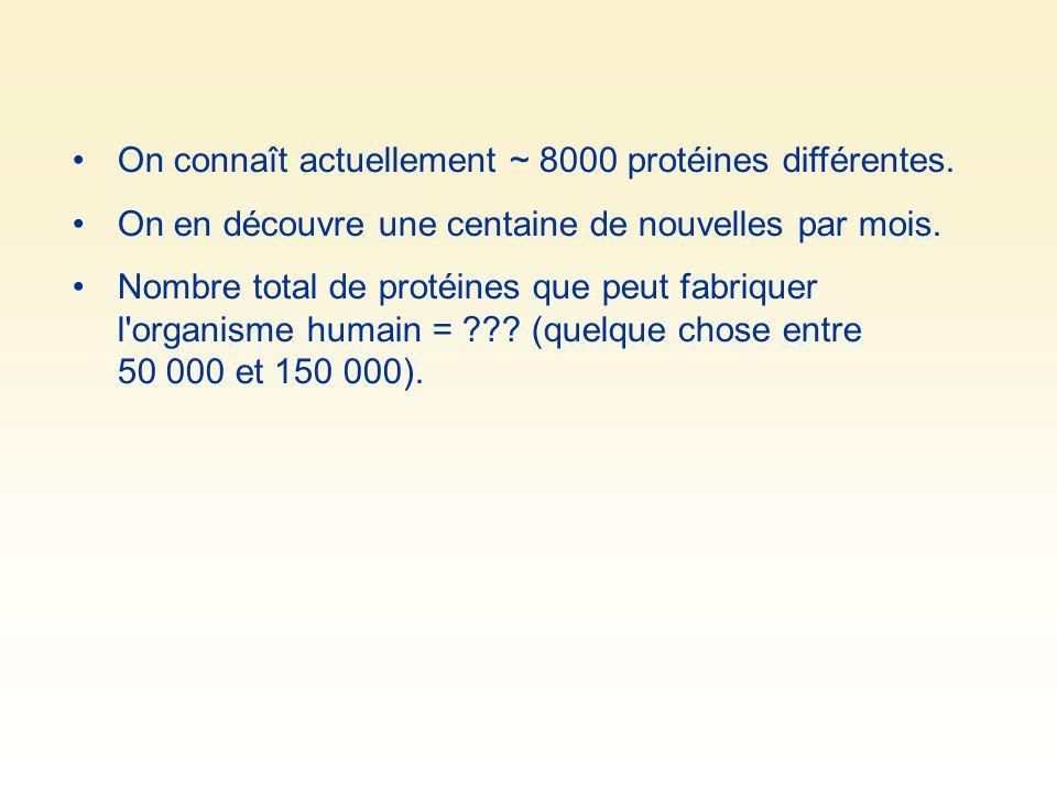 On connaît actuellement ~ 8000 protéines différentes. On en découvre une centaine de nouvelles par mois. Nombre total de protéines que peut fabriquer
