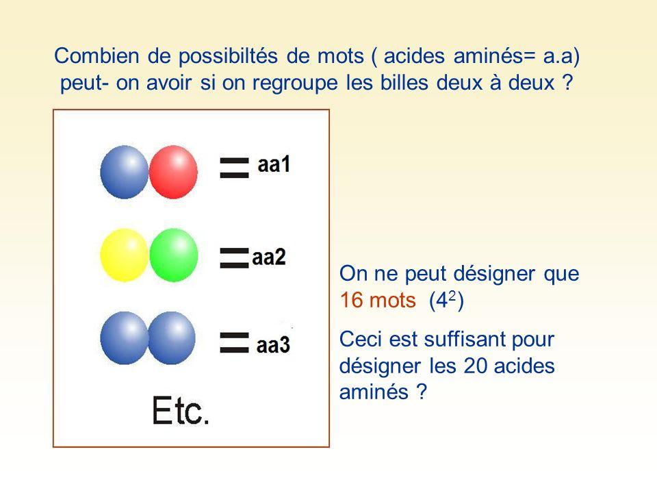 Combien de possibiltés de mots ( acides aminés= a.a) peut- on avoir si on regroupe les billes deux à deux ? On ne peut désigner que 16 mots (4 2 ) Cec