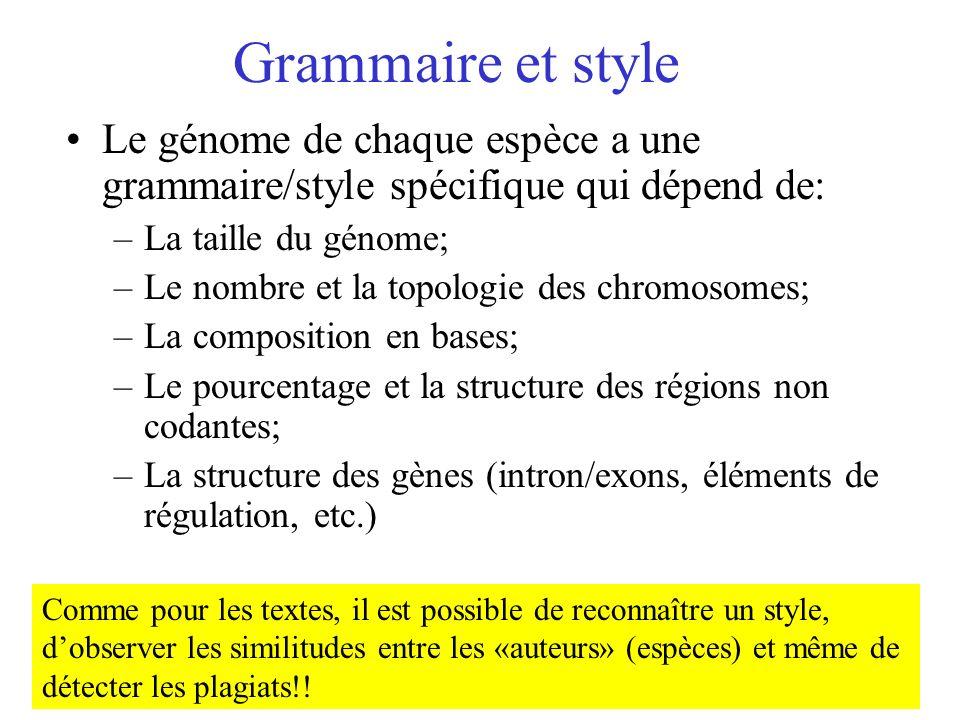 Grammaire et style Le génome de chaque espèce a une grammaire/style spécifique qui dépend de: –La taille du génome; –Le nombre et la topologie des chr
