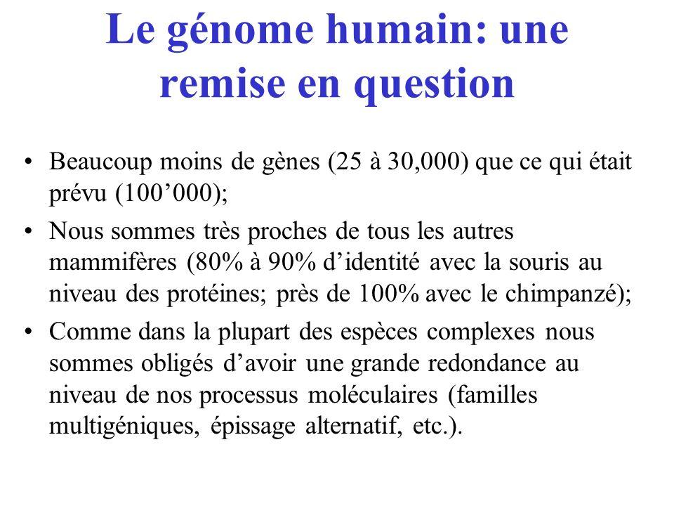 Le génome humain: une remise en question Beaucoup moins de gènes (25 à 30,000) que ce qui était prévu (100000); Nous sommes très proches de tous les a