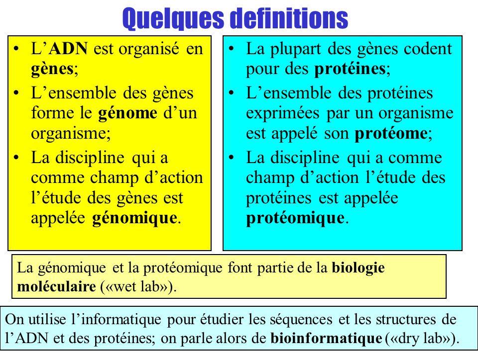 Quelques definitions LADN est organisé en gènes; Lensemble des gènes forme le génome dun organisme; La discipline qui a comme champ daction létude des