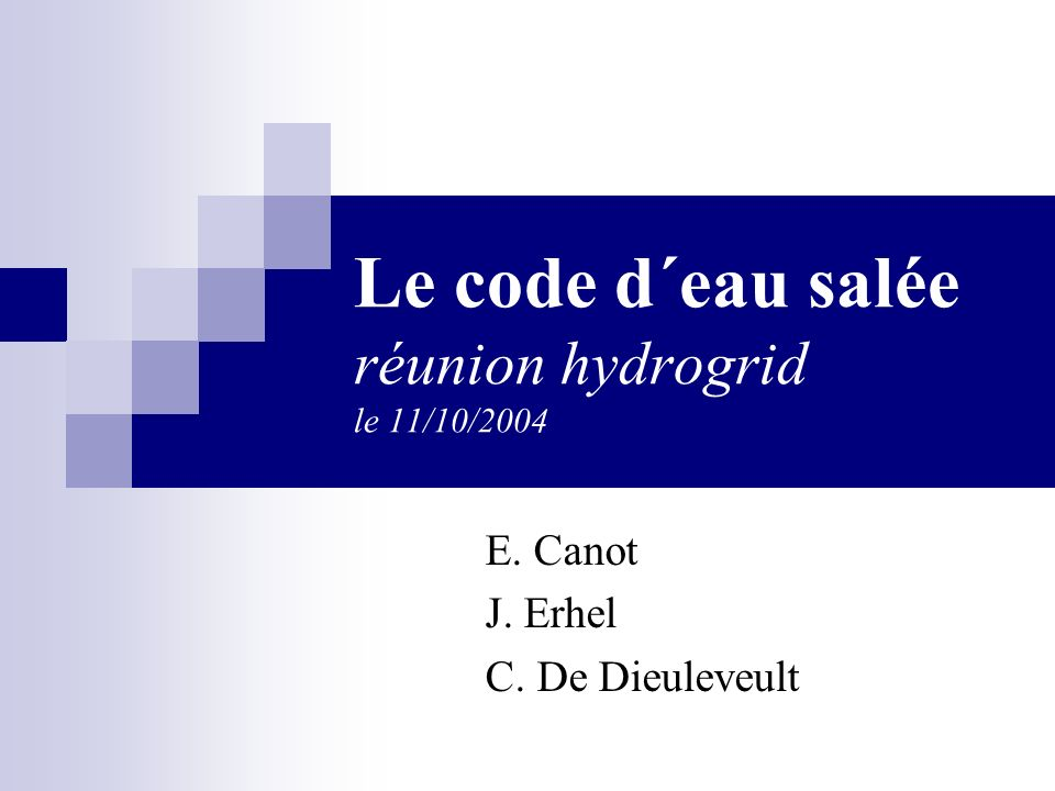 E. Canot J. Erhel C. De Dieuleveult Le code d´eau salée réunion hydrogrid le 11/10/2004