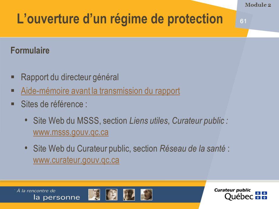 61 Formulaire Rapport du directeur général Aide-mémoire avant la transmission du rapport Sites de référence : Site Web du MSSS, section Liens utiles,