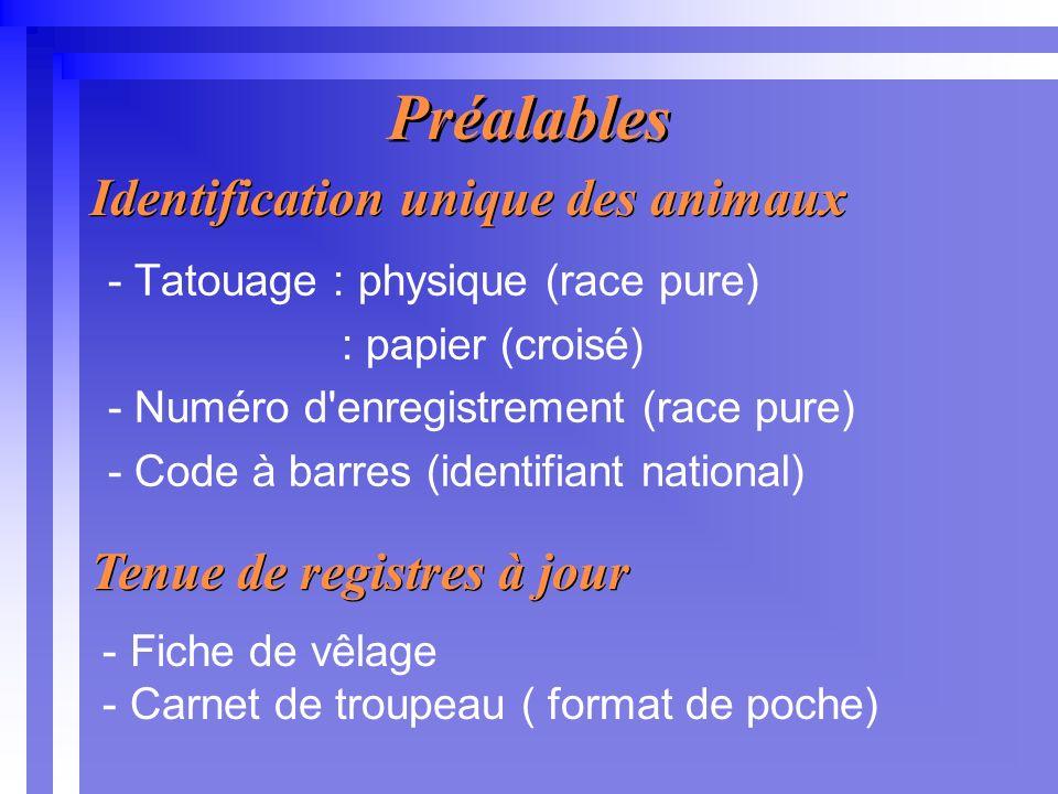 Préalables - Tatouage : physique (race pure) : papier (croisé) - Numéro d enregistrement (race pure) - Code à barres (identifiant national) Identification unique des animaux Tenue de registres à jour - Fiche de vêlage - Carnet de troupeau ( format de poche)