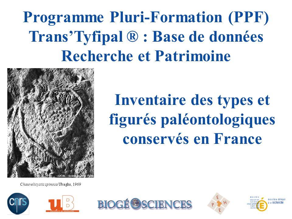 Programme Pluri-Formation (PPF) TransTyfipal ® : Base de données Recherche et Patrimoine Chauvelicystis spinosa Ubaghs, 1969 Inventaire des types et f