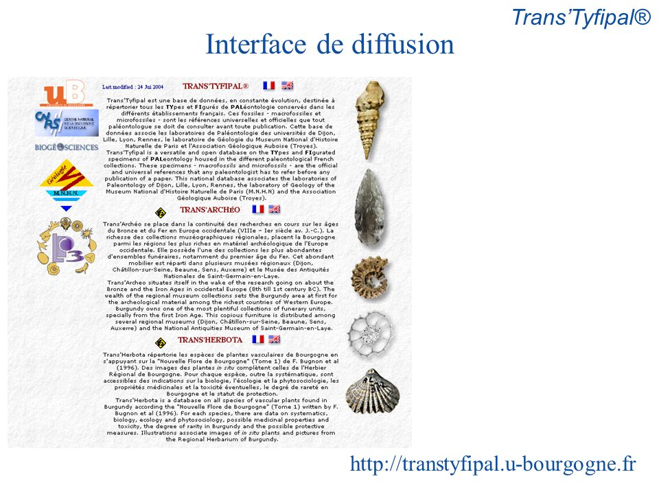 Interface de diffusion http://transtyfipal.u-bourgogne.fr TransTyfipal®
