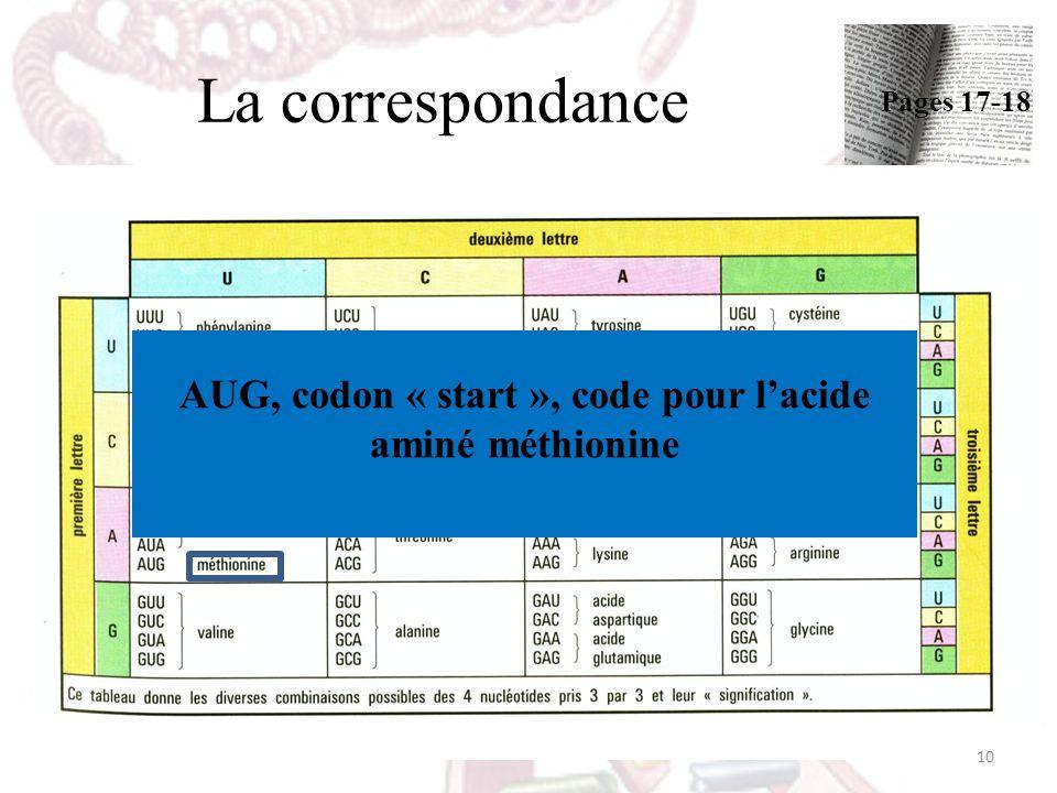 La correspondance AUG, codon « start », code pour lacide aminé méthionine 10 Pages 17-18