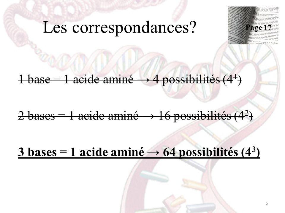 Les correspondances? 1 base = 1 acide aminé 4 possibilités (4 1 ) 2 bases = 1 acide aminé 16 possibilités (4 2 ) 3 bases = 1 acide aminé 64 possibilit