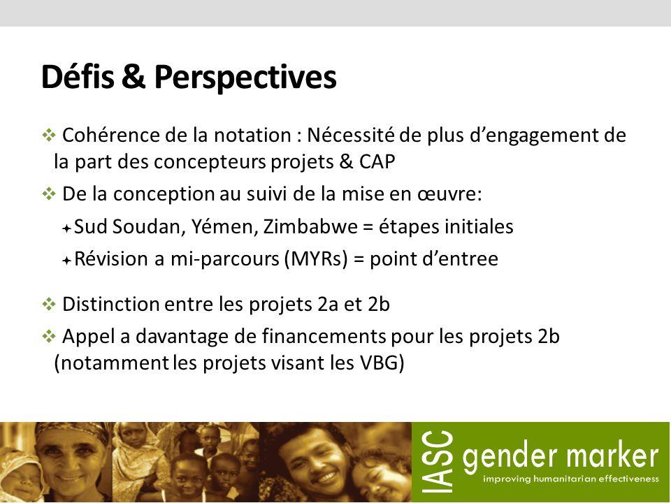 Défis & Perspectives Cohérence de la notation : Nécessité de plus dengagement de la part des concepteurs projets & CAP De la conception au suivi de la mise en œuvre: Sud Soudan, Yémen, Zimbabwe = étapes initiales Révision a mi-parcours (MYRs) = point dentree Distinction entre les projets 2a et 2b Appel a davantage de financements pour les projets 2b (notamment les projets visant les VBG)