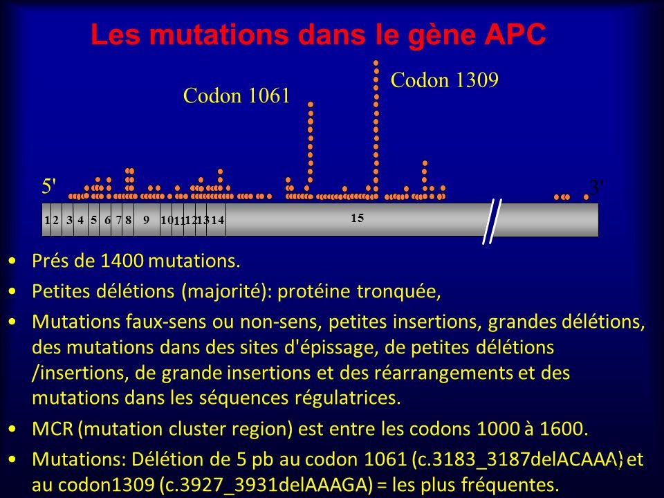 Les mutations dans le gène APC Prés de 1400 mutations. Petites délétions (majorité): protéine tronquée, Mutations faux-sens ou non-sens, petites inser