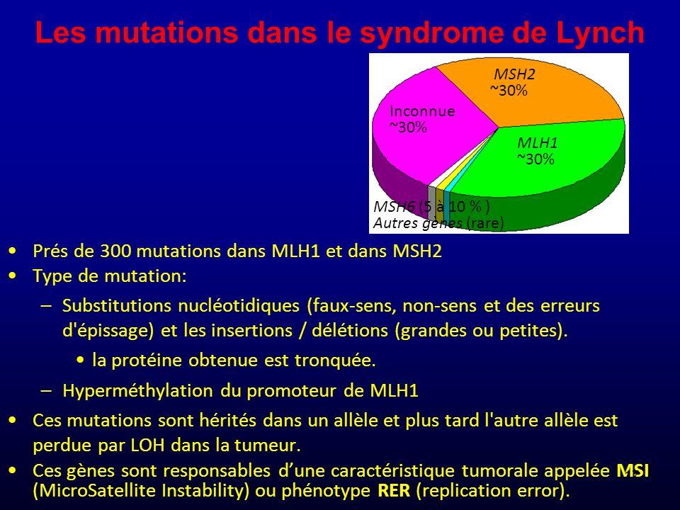 Les mutations dans le syndrome de Lynch Prés de 300 mutations dans MLH1 et dans MSH2 Type de mutation: –Substitutions nucléotidiques (faux-sens, non-s
