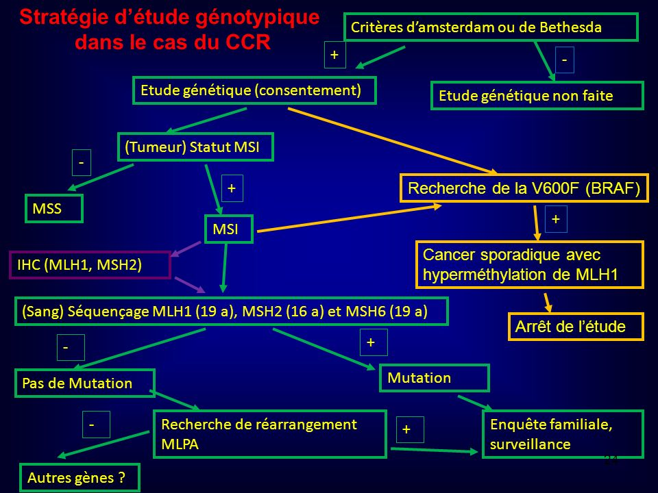 Critères damsterdam ou de Bethesda Etude génétique (consentement) Etude génétique non faite (Tumeur) Statut MSI MSI + - MSS - + (Sang) Séquençage MLH1