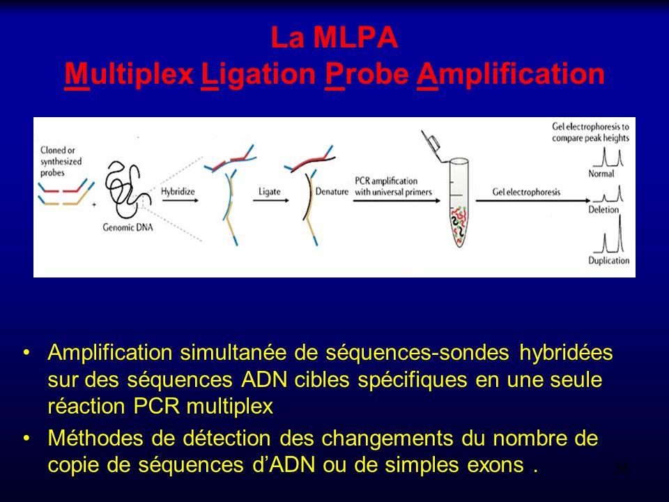 La MLPA Multiplex Ligation Probe Amplification Amplification simultanée de séquences-sondes hybridées sur des séquences ADN cibles spécifiques en une