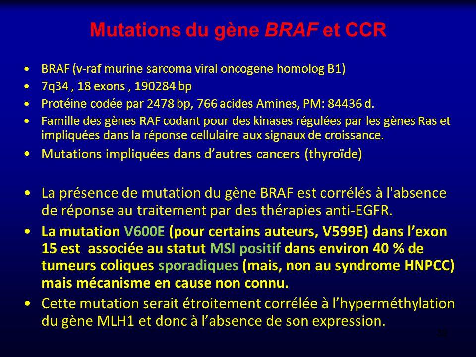Mutations du gène BRAF et CCR BRAF (v-raf murine sarcoma viral oncogene homolog B1) 7q34, 18 exons, 190284 bp Protéine codée par 2478 bp, 766 acides A