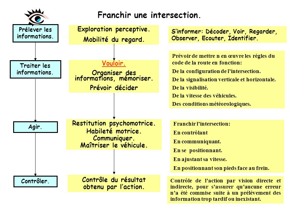 Analyse physiologique dune situation. En abordant une intersection, le conducteur: Détecte lintersection. Identifie lintersection. Prend linformation.