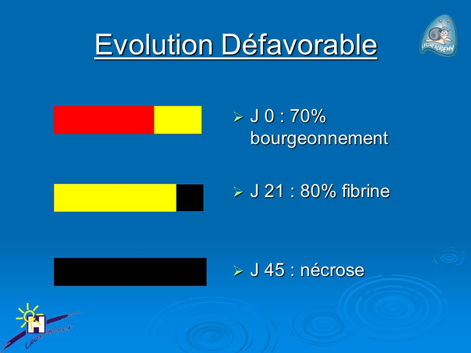 Evolution Défavorable J 0 : 70% bourgeonnement J 0 : 70% bourgeonnement J 21 : 80% fibrine J 21 : 80% fibrine J 45 : nécrose J 45 : nécrose
