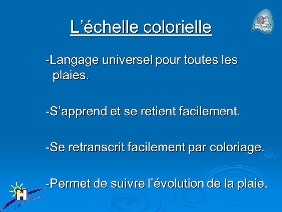 Léchelle colorielle -Langage universel pour toutes les plaies.