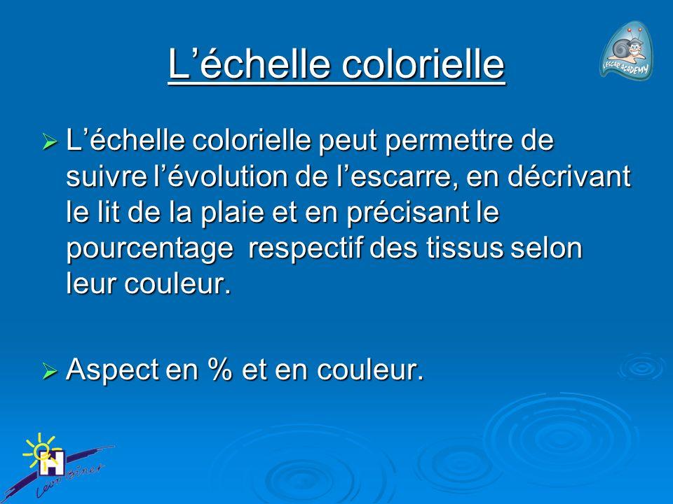 Léchelle colorielle Léchelle colorielle peut permettre de suivre lévolution de lescarre, en décrivant le lit de la plaie et en précisant le pourcentage respectif des tissus selon leur couleur.
