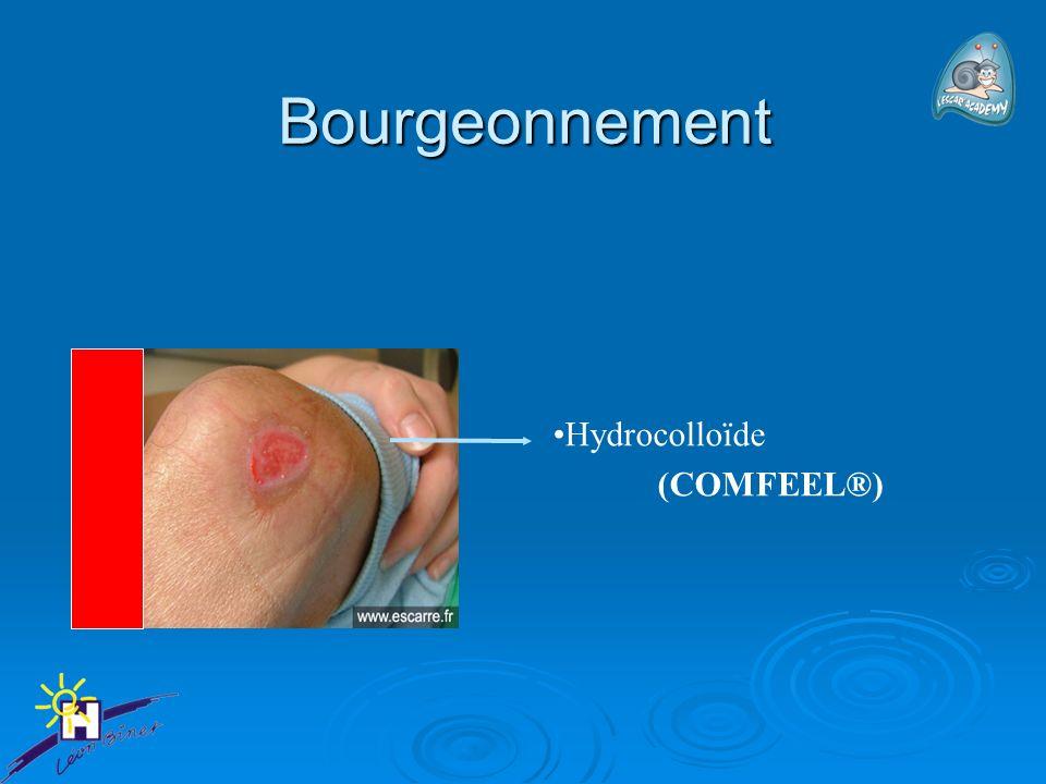Bourgeonnement Hydrocolloïde (COMFEEL®)