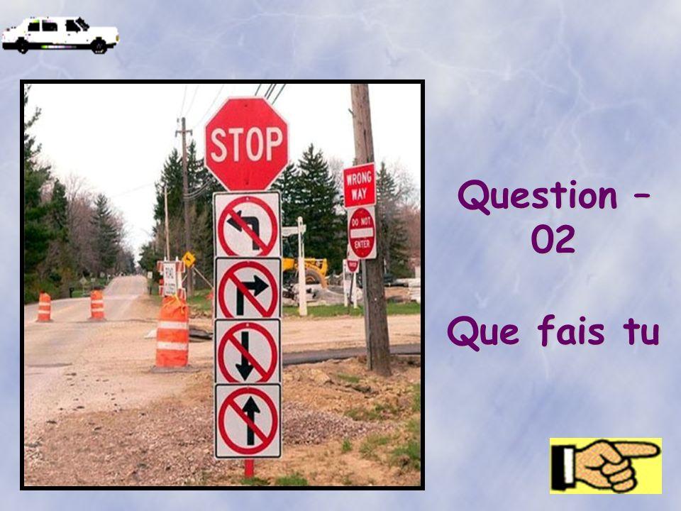Question – 02 Que fais tu