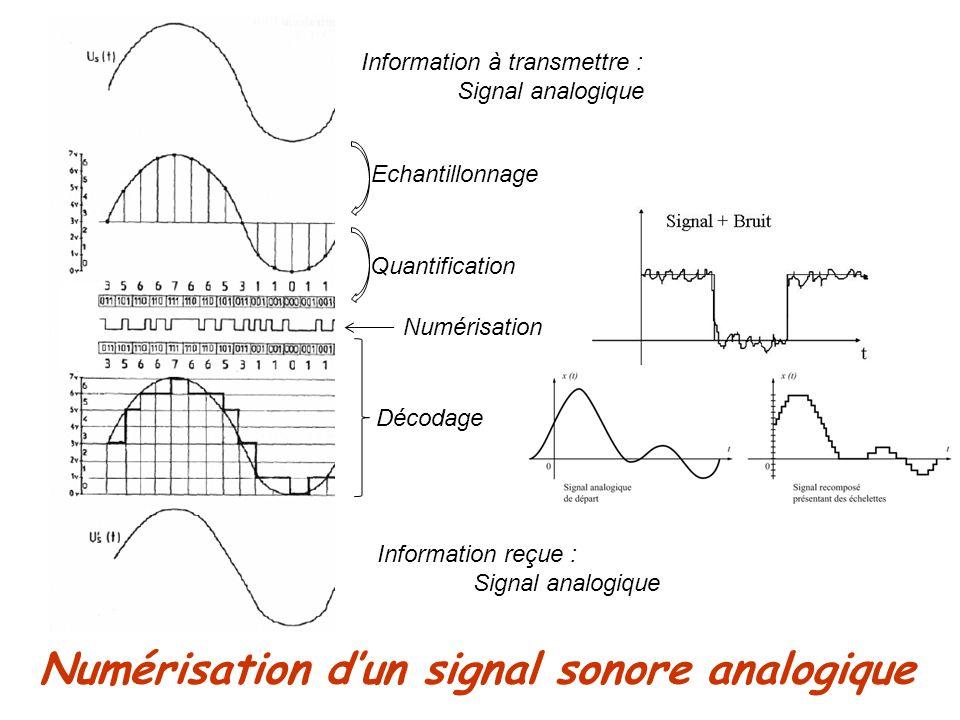 Numérisation dun signal sonore analogique Information à transmettre : Signal analogique Décodage Information reçue : Signal analogique Echantillonnage