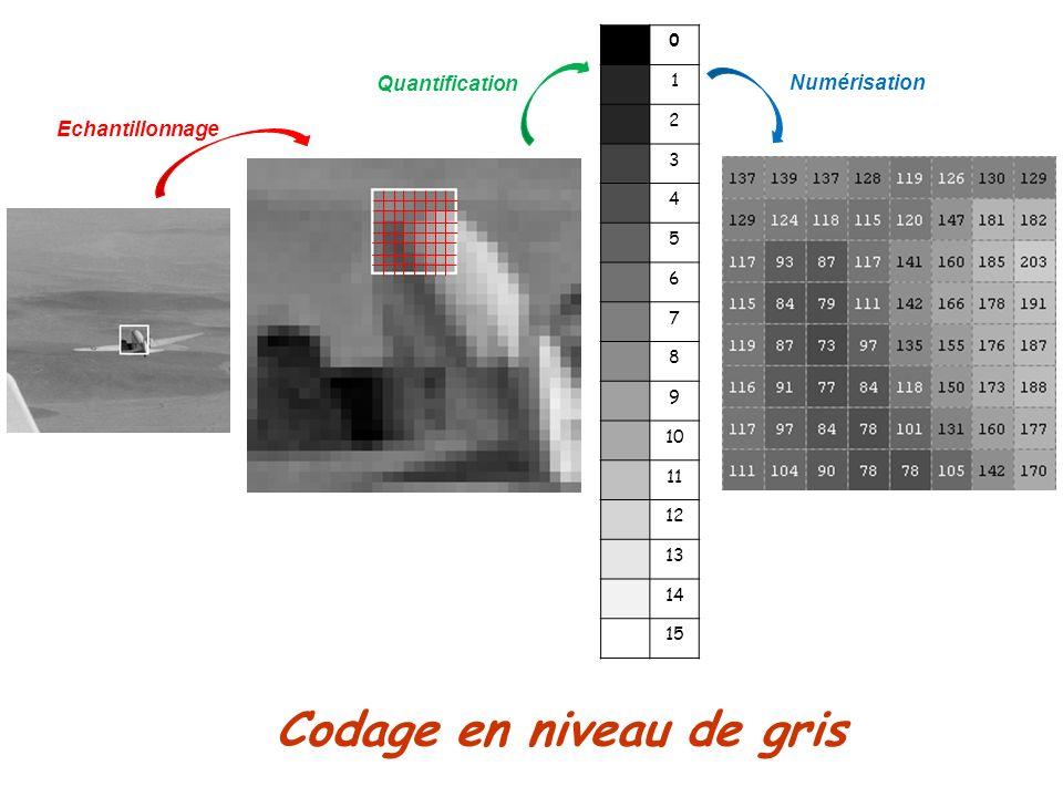 Codage en niveau de gris Echantillonnage Quantification 0 1 2 3 4 5 6 7 8 9 10 11 12 13 14 15 Numérisation