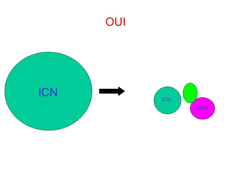 OUI ICN MMF